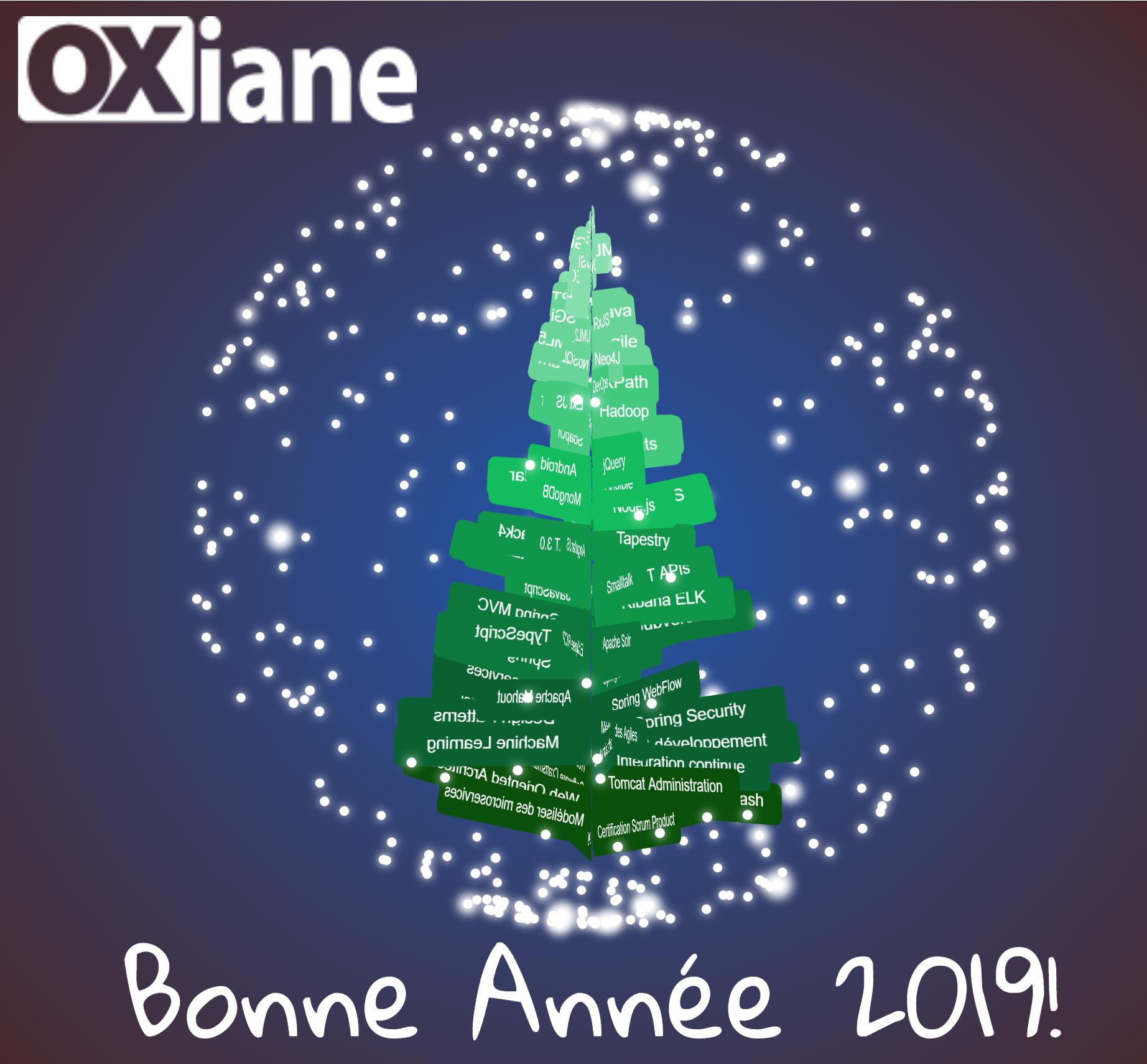 Image De Joyeux Noel 2019.Joyeux Noel Et Bonne Annee 2019 Oxiane